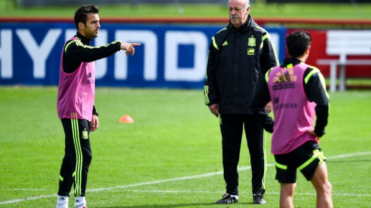 Video: Cesc Fabregas and Vicente del Bosque argue at Spain training ahead of final game
