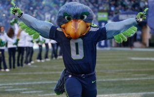 Video: Seattle Seahawks mascot proves too quick for this 49ers fan who ends up face down on the ground