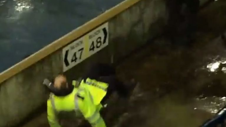 Video: Fight breaks out at Millwall v Sheffield Wednesday game, policeman hilariously falls in a puddle