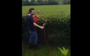 Video: Zero fu**s given by this Irish lad using a lawnmower to trim his hedges