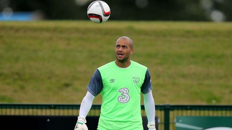 PIC: Darren Randolph's Wikipedia page has been updated and it makes for glorious reading
