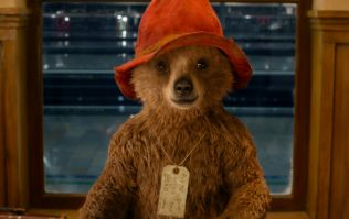 PICS: A doggie that looks exactly like Paddington Bear has become a bit of a viral sensation