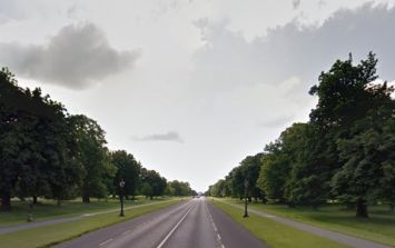 Public are urged to avoid Phoenix Park and Dublin Zoo is closed due to Storm Ali
