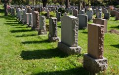 Cork woman visiting mother's grave disgusted to find people having sex in cemetery