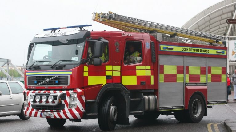 Child survives being struck by falling tree in Cork