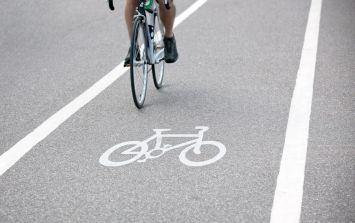 Hundreds of cyclists took to Dublin streets on Sunday to demand safer roads