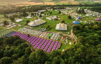 Ticket details for Electric Picnic 2018 have been revealed