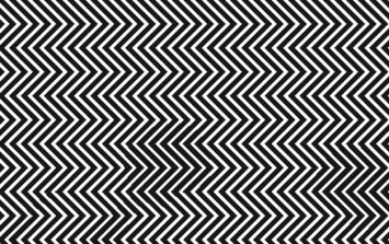 PIC: Can you see what's hidden behind this black and white image