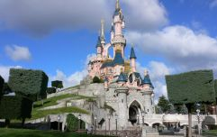 Disney are offering you a Dublin-based dream job, but you'll need to apply soon