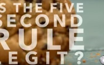 VIDEO: Proof from NASA that it's (mostly) fine to abide by the five-second rule
