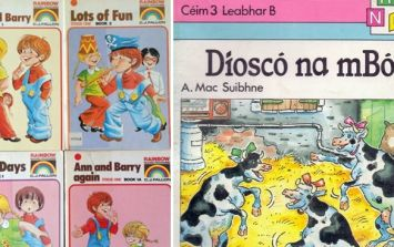 PICS: These 13 school books will terrify Irish people of a certain age