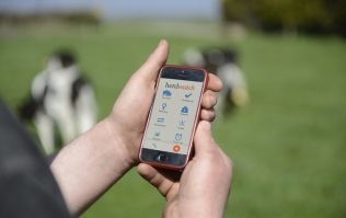 Take our farming survey to be in with a chance of winning an iPad and a 1 year subscription to Herdwatch