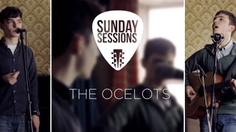 Sunday Sessions - The Ocelots