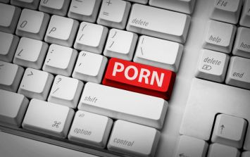 The porn sites accessed most by computers in the Dáil have been revealed