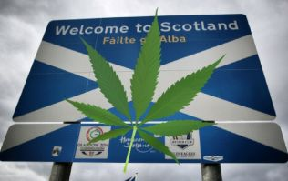 Scotland wants to decriminalise cannabis after historic vote