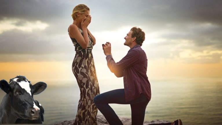 the ten most popular places to get engaged have been revealed joe