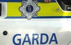 PIC: Garda in Kerry pull driver over and make startling discovery in the back seat