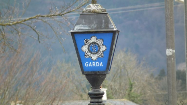 A man in his 20s has died following a suspected hit and run in Longford