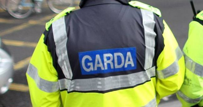 Gardaí searching for missing woman have discovered a body in Dublin