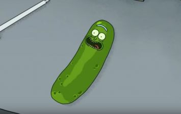 Pickle Rick was inspired by an episode of pretty much the greatest TV show ever made