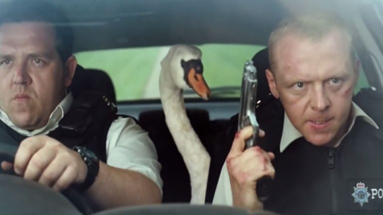 'Hot Fuzz' police actually arrest a rogue swan that was causing havoc on the roads