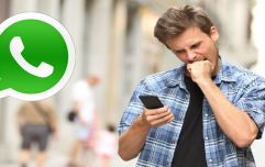Irishman creates a WhatsApp group and adds ladies that he wants to be his 'summer girlfriend,' it backfires