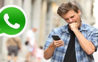 Irishman creates WhatsApp group and adds ladies that he wants to be his 'summer girlfriend'; it backfires
