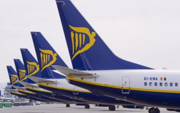 Ryanair plane bound for Dublin, carrying Irish people coming home to vote, collides with jet in Stansted