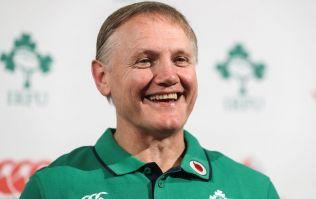 Joe Schmidt to step down as Ireland coach after 2019 World Cup