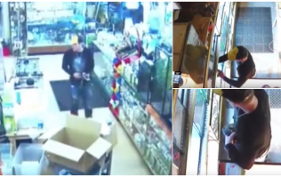 WATCH: Man steals snake from store by shoving it down his pants