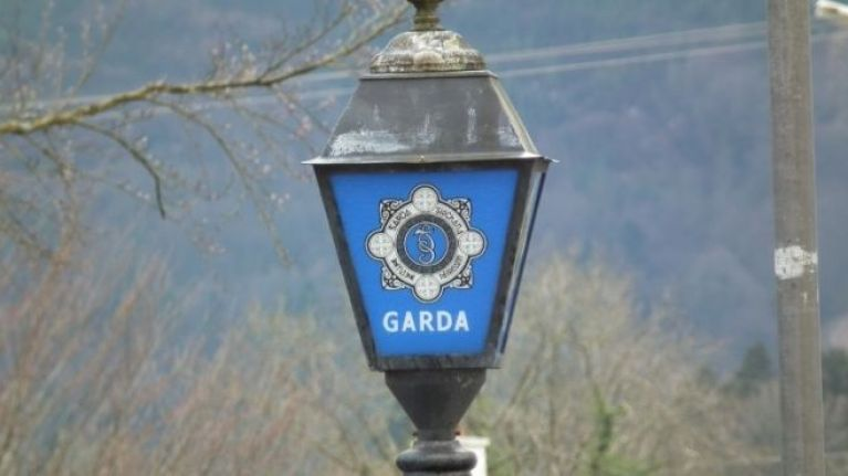 Gardaí recover €500,000 worth of stolen plant machinery and vehicles in Longford