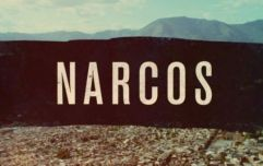 Season 4 of Narcos has released its official plot details and a first look at the new characters
