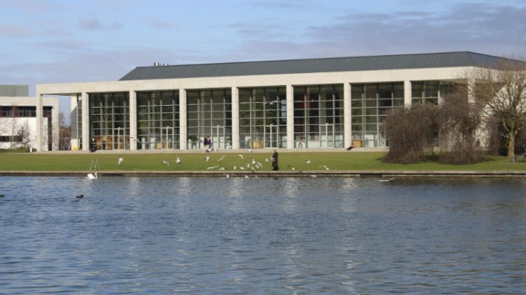 PIC: If you want to show someone what true love is, this photo from UCD is perfect