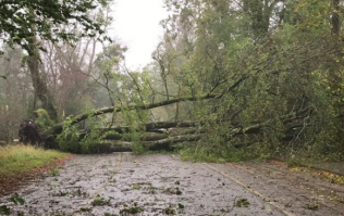 Road Safety Authority issue warning to road users following Ophelia
