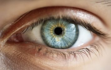 Scientists have discovered a terrifying-sounding new worm in a human eye
