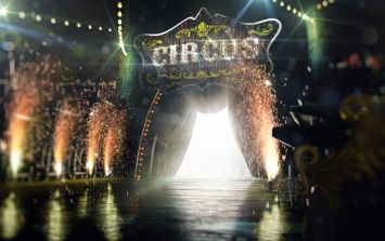 Big change coming to circuses as wild animals banned from new year
