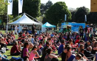 The organisers of WellFest have announced the schedule for this year's festival