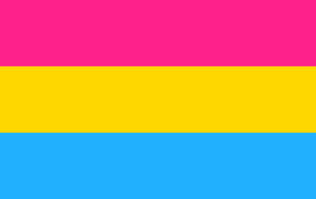 There was an 11,000% rise in the search for the definition of 'Pansexual' this week