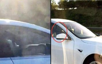 WATCH: Man banned from driving for riding Tesla down motorway in passenger seat