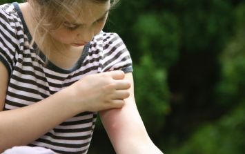 HSE issues warning over tick bites and their dangers ahead of the summer