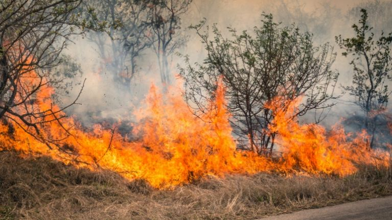 The Department of Agriculture has issued a fire warning for Ireland