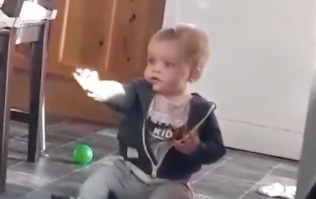 Cork baby is completely amazed after seeing sunshine for the first time