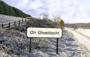Can you get 15/15 in this simple Irish language quiz?
