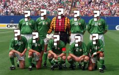 QUIZ: Can you remember the starting XI from Ireland's iconic win over Italy at USA '94?