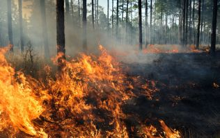A status orange forest fire warning has been issued for all of Ireland until Tuesday