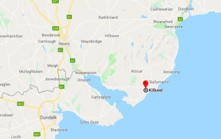 Alert raised over suspected ammonia leak in Co. Down (reports)