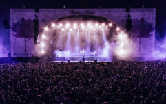 If you missed out on an Electric Picnic ticket, here's how you can get one for free