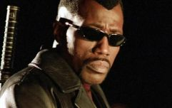 Blade almost had a prequel film and the plot was pretty interesting
