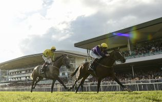 WIN: Halo and JOE are offering you a brilliant prize for the Galway Races
