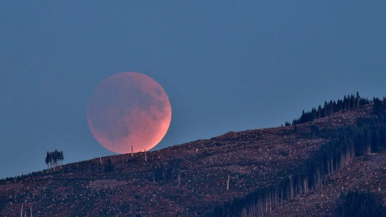 """A """"deep"""" partial lunar eclipse is expected to be visible from Ireland tonight"""